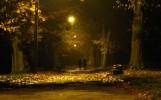 III Wieczorny spacer fot. Klara Świć jesień