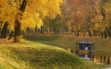 Park w Radzyniu Podlaskim, jesień 2006, fot. T. Młynarczyk