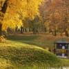 park w radzyniu podlaskim, jesień 2006, fot