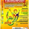 VI Radzyńska Paraolimpiada