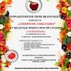 Czerwone Jabłuszko IV Branickie Święto Owoców i Warzyw