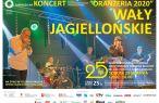 Koncert zespołu Wały Jagiellońskie