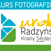 Letni Konkurs Fotograficzny Uroki Radzyńskiej Krainy Serdeczności