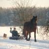 Зимой - Стабильный Borysiuk